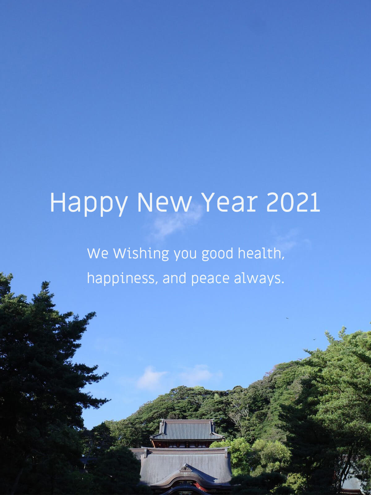 Happy New Year 2021 / 新年のご挨拶